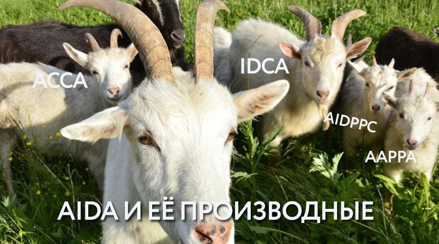 формула AIDA АИДА и её производные
